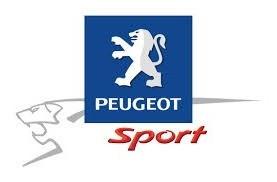 Barra duomi Peugeot