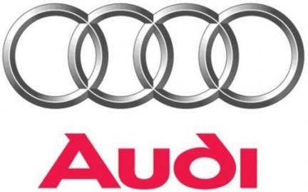 Roll bar Audi